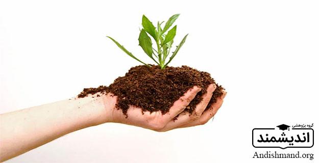 تودههای مواد آلی گیاهان و حیوانات