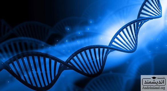 این ژن های هیجان انگیز - حقایق جالبی درباره ژنوم های انسانی