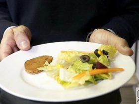استیک گیاهی - تولید استیک گیاهی از لوبیا و چغندر