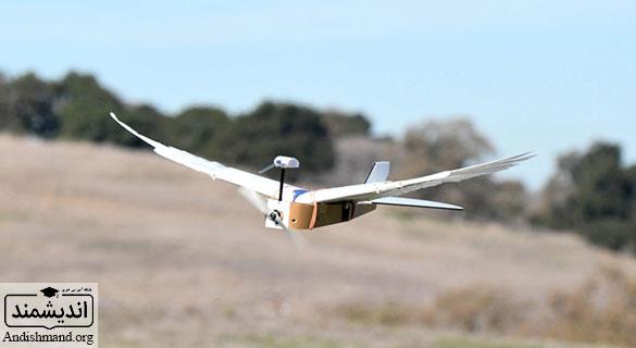 ربات پرنده - ساخت ربات پرنده با استفاده از پرهای کبوتر