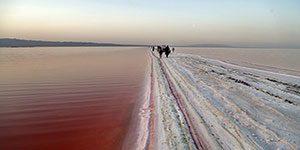 دریاچه نمک قم - جلبک ها دریاچه نمک را سرخ کردند