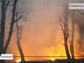 مهار آتش سوزی در جنگل های سراوان رشت
